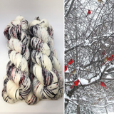Cardinals, Branches and Snow
