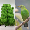 Green Honeycreeper Feather