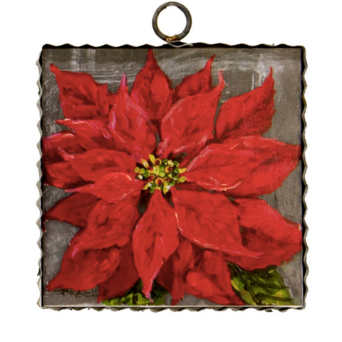 Red Poinsettia of Christmas