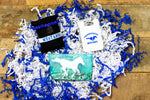 Friendswood Mustangs Curated Box #1