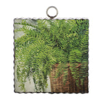 Mini Fern Basket Print