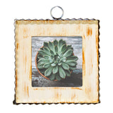 Pie Crust Photo Frame