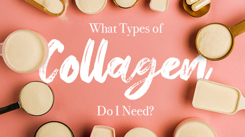 What Are Collagen Types?
