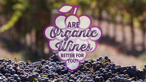 Are Organic Wines Better for You?