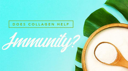 Does Collagen Help Immunity?