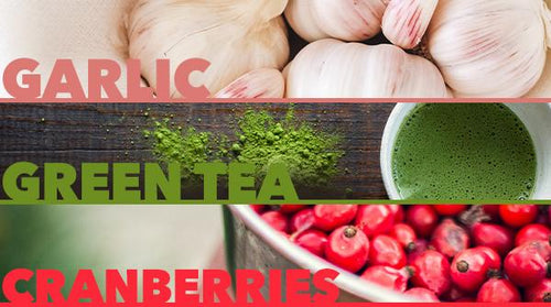 Kitchen Immunity: Garlic, Green Tea and Cranberry