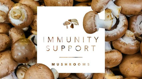 What Are the Best Mushrooms for Immunity?
