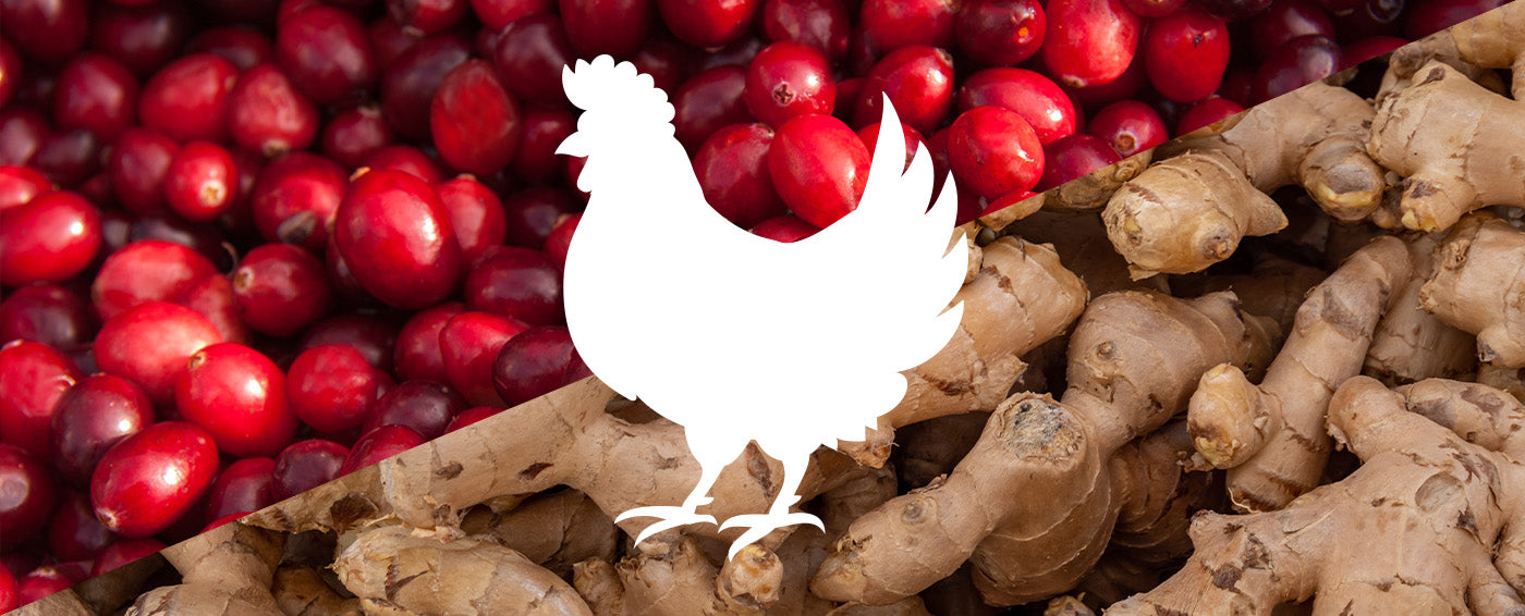 Cranberry Ginger Chicken article banner