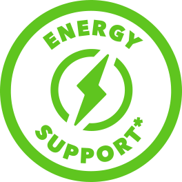 green energy support icon