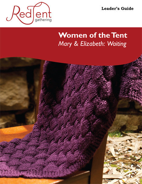 Session 8 -- Mary & Elizabeth: Waiting