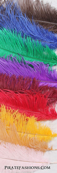 Medium Ostrich Plumes Color Options: Brown, Blue, Green, Purple, Burgundy, Red, Yellow, Orange, Pink