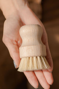 Agave & Bamboo Dish & Vegetable Brush