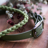 Moss Biothane Native Collar with matching Moss coloured Paracord Lead by Native Collars (5104059941004)