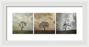 Last Day Of Winter Triptych - Framed Print