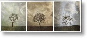 Last Day Of Winter Triptych - Metal Print