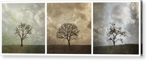 Last Day Of Winter Triptych - Acrylic Print
