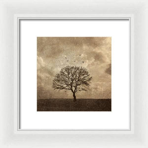 Winter Afternoon - Framed Print