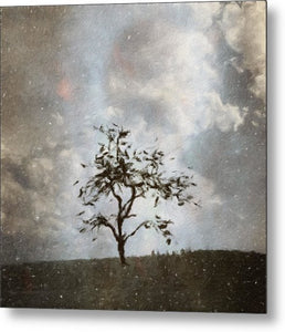 Winter Evening - Metal Print