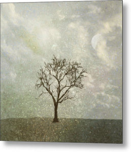 Winter Morning - Metal Print