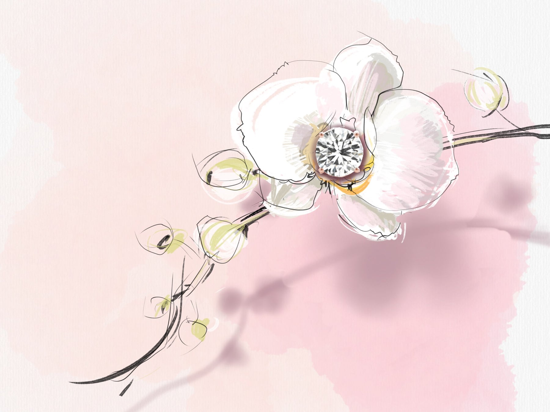 Image of Orchid with Diamond