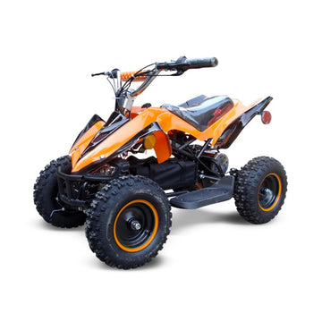 Electric Quad Manteray