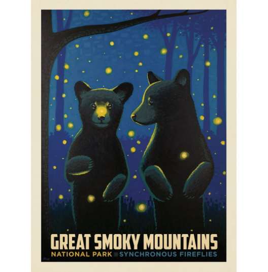 Great Smoky Mountains Firefly Cubs Art Print