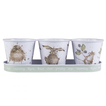 Load image into Gallery viewer, Herb Pots & Tray Set