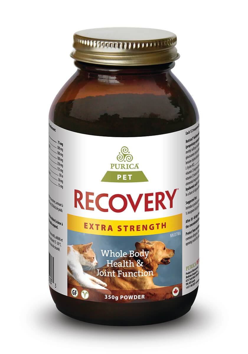 Pet Recovery Extra Strength