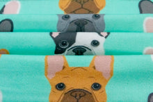 Load image into Gallery viewer, Green French Bulldog Face Mask And Dog Bow Tie