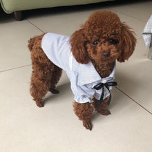 Load image into Gallery viewer, Soft Cotton Dog Shirt