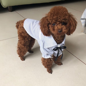Soft Cotton Dog Shirt