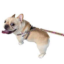 Load image into Gallery viewer, Check Diamond Teady Harness-Leash set