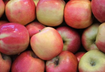 Samascott, Apples Pink Lady IPM Local, 1 lb