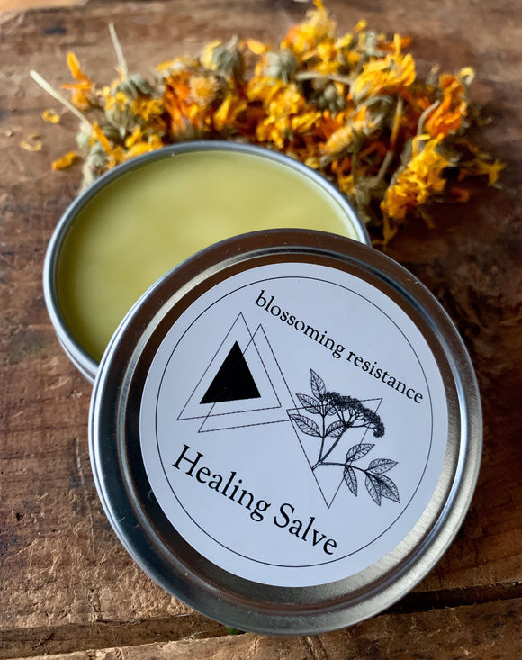 Blossoming Resistance, Salve Healing Cheshire MA, 2 oz