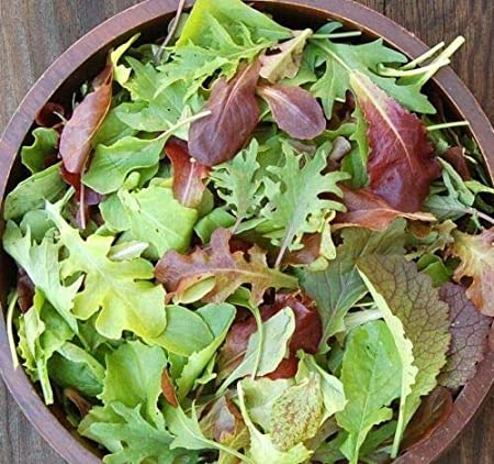 Radicle, Lettuce Baby Sustainable Local, half pound