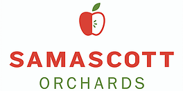 Samascott, Cider Apple Local, quart