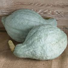 Blooming Hill, Squash Blue Hubbard Organic Local, lb