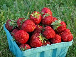 Random Harvest, Strawberries Frozen IPM Local, 8 oz