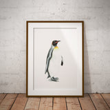Emperor Penguin by Tup Designs & Wil Shrike