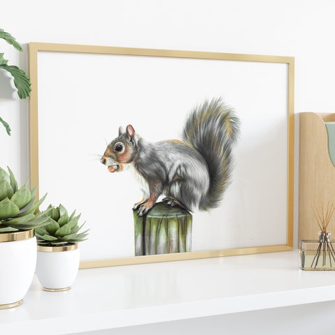 Grey Squirrel by Tup Designs & Wil Shrike