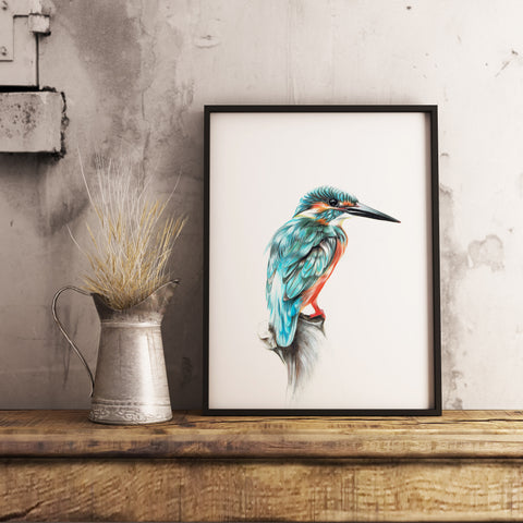 Kingfisher by Tup Designs & Wil Shrike