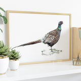 Pheasant | Original by Tup Designs & Wil Shrike
