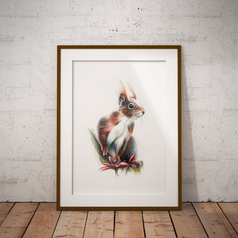 Red Squirrel | No 2 by Tup Designs & Wil Shrike