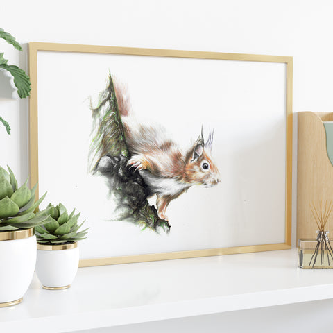 Red Squirrel by Tup Designs & Wil Shrike