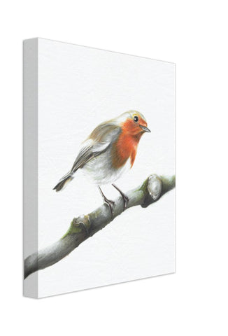 Robin | Canvas by Tup Designs & Wil Shrike