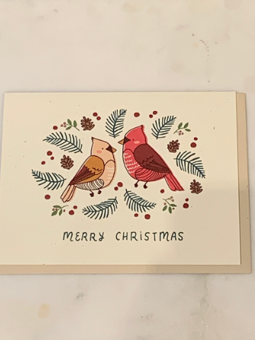 Cardinals Holiday Charity Greeting Card - Joy