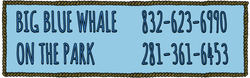 Big Blue Whale/On the Park