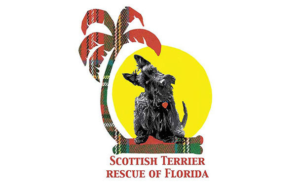 Scottish Terrier Rescue of Florida tile image