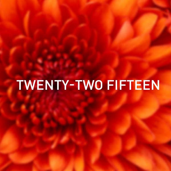 Twenty Two Fifteen tile image