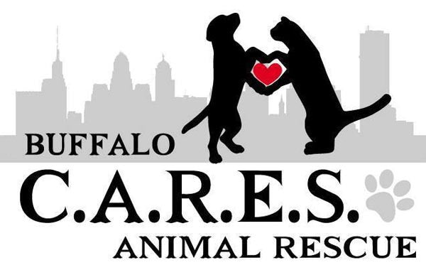 Buffalo C.A.R.E.S. Animal Rescue tile image